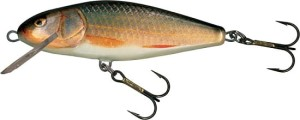 Wobler Salmo Perch PH12F RR REAL ROACH